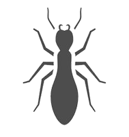 termite-protection