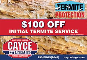 termite-service