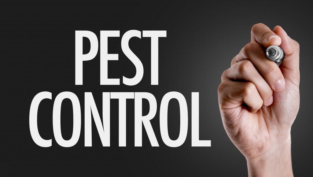 pest control in Columbia SC